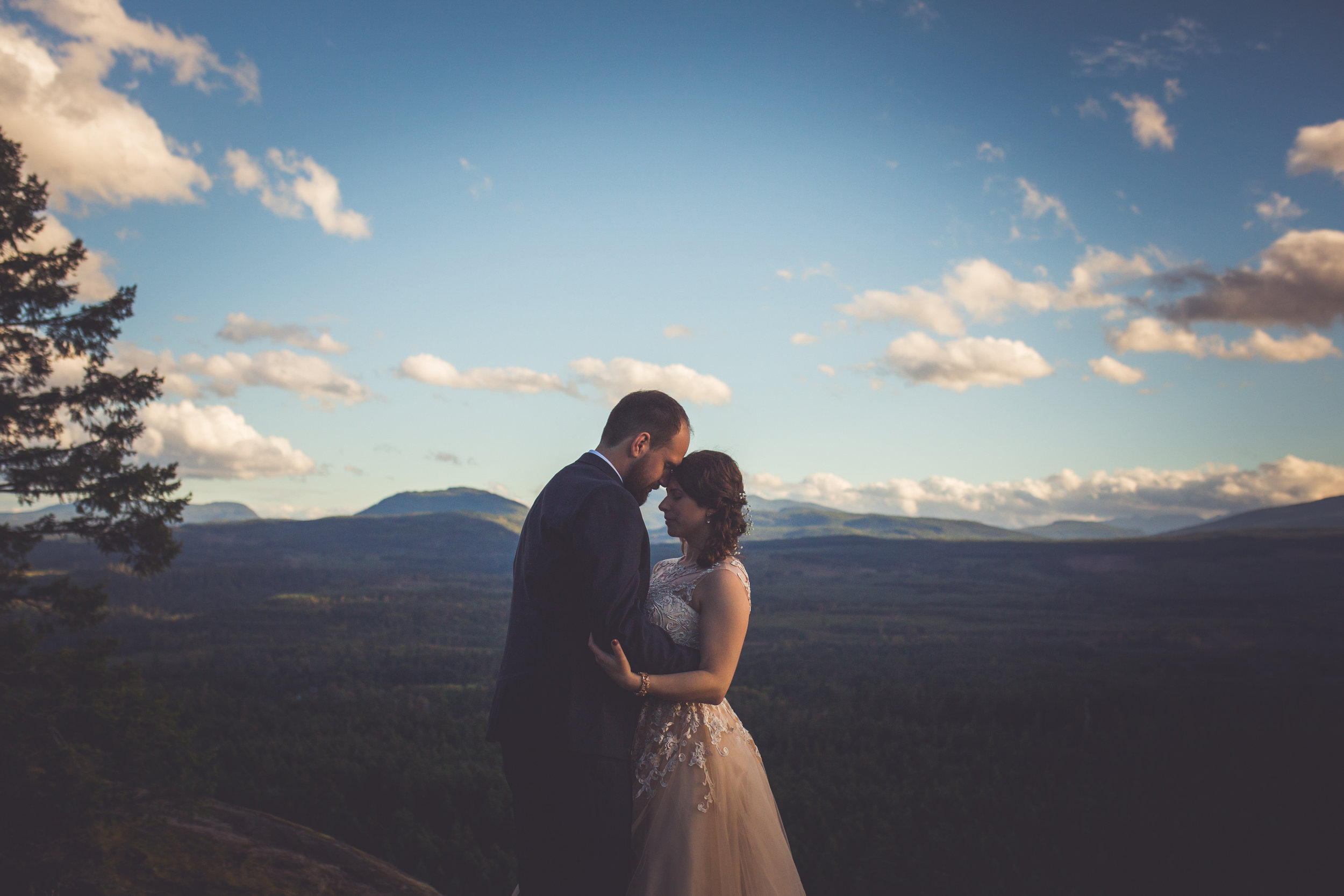 little mountain parksville bc wedding