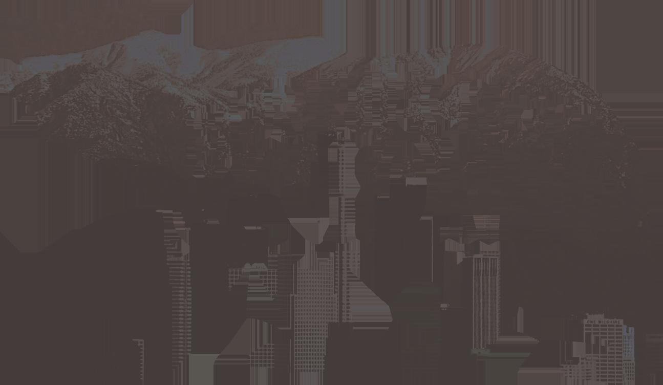 Berniecrats of California