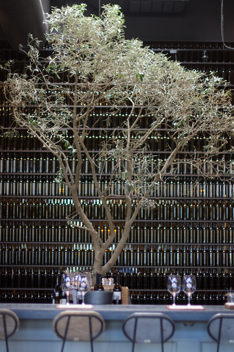 PANGLOSS CELLARS ASAVVYLIFESTYLE.COM | RACHAEL HAIRSTON PHOTOGRAPHY