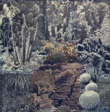 suzi gablik desert scene collage 1967.jpg