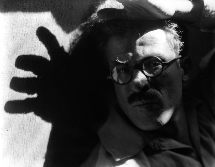 Roi+Partridge+With+Shadow+of+a+Hand,+1922.jpg