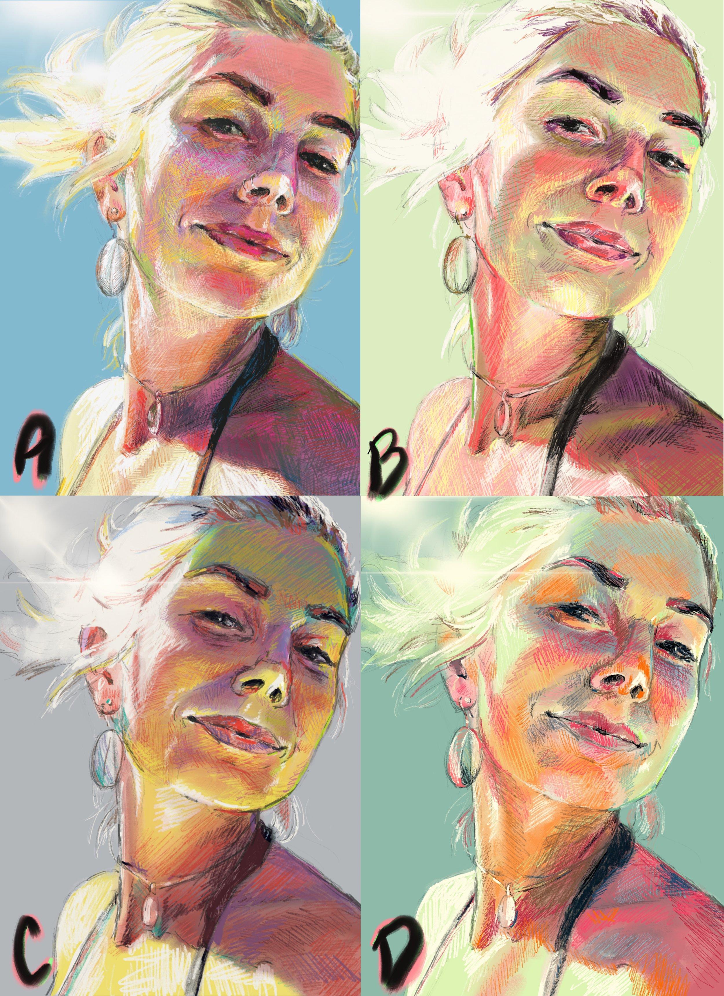 portrait artist faith dartily color palette preference.JPG