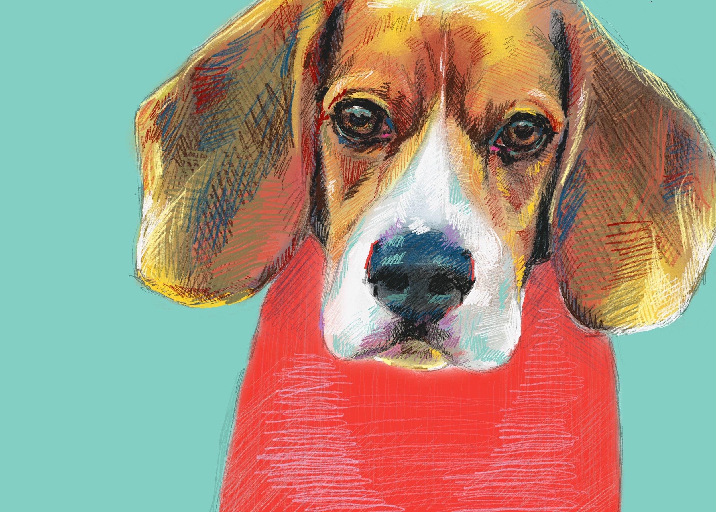 illustration dog snoopy beagle artist.jpg