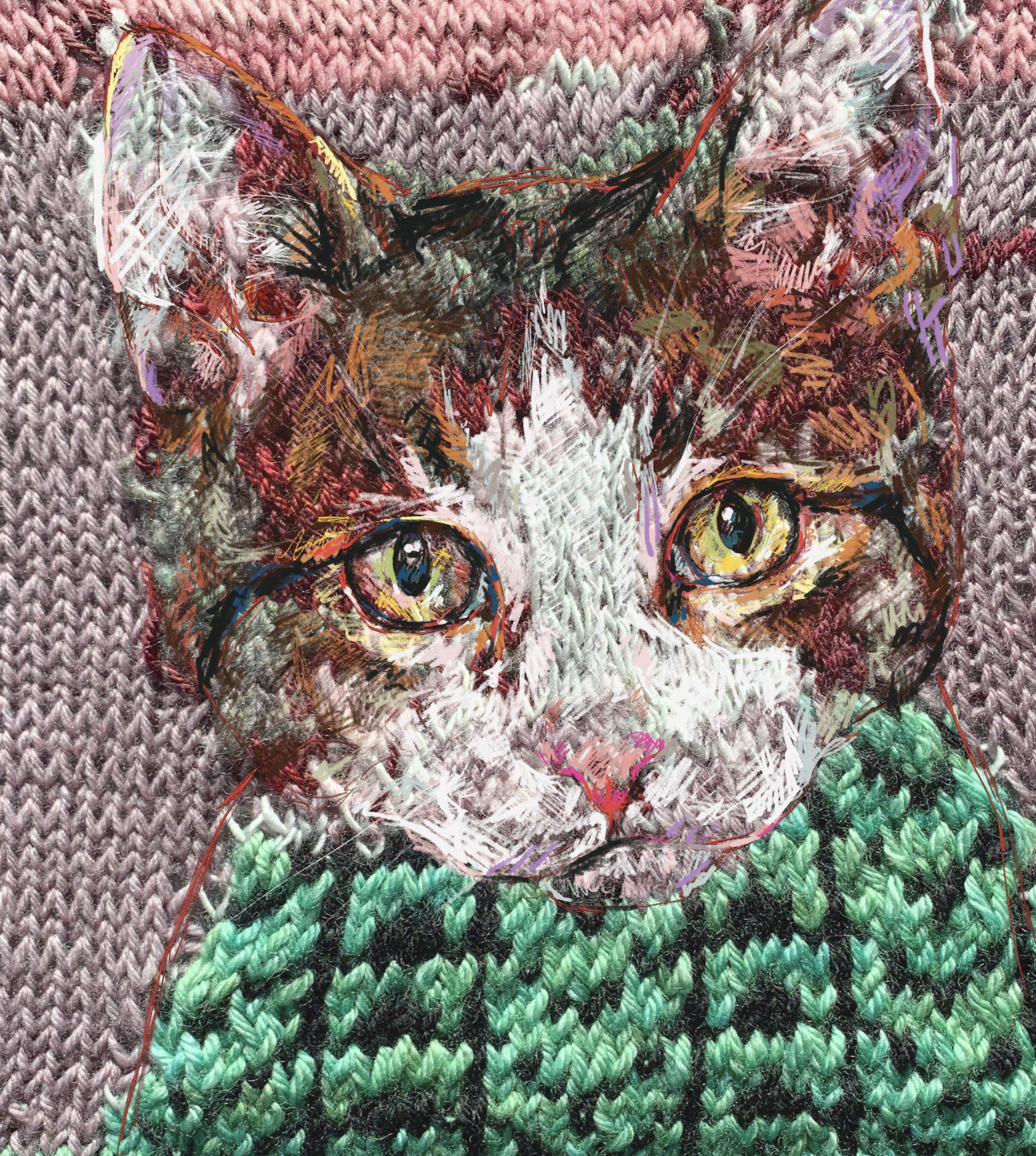 faith humphrey hill knit and drawn cat portrait.jpg