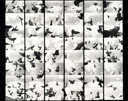 1982_56.jpg