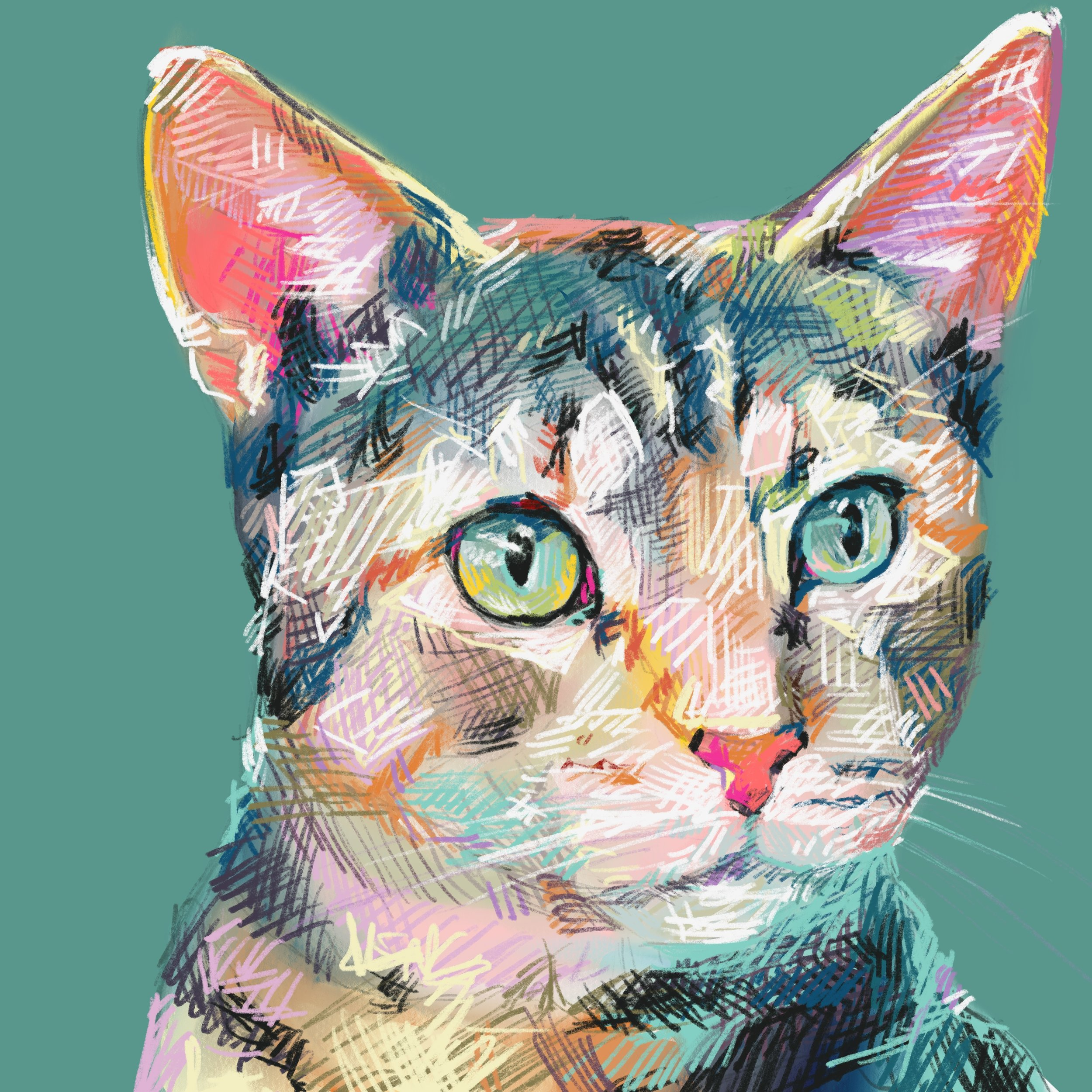 faith portrait cat .jpg