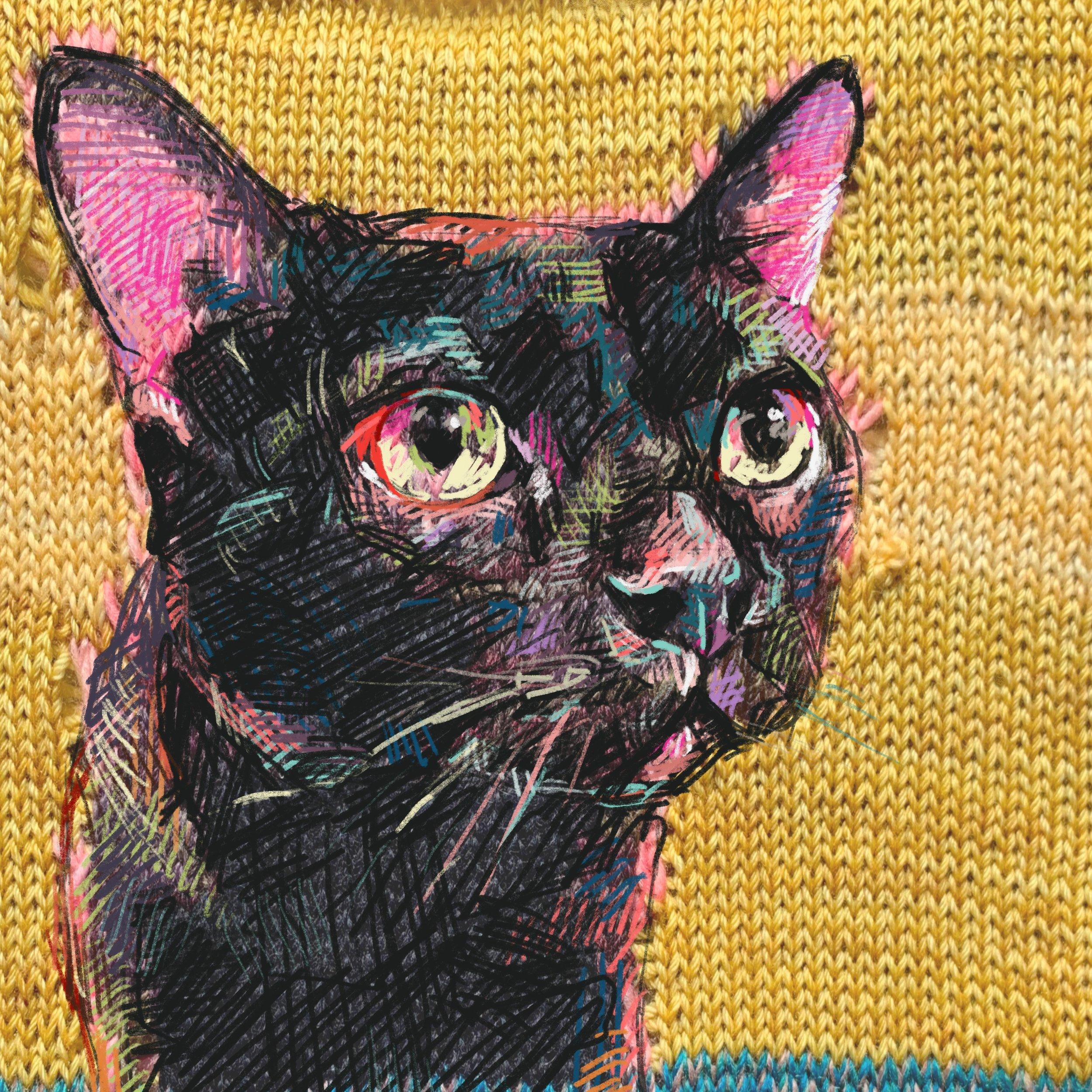 faith artwork knit cat.jpg