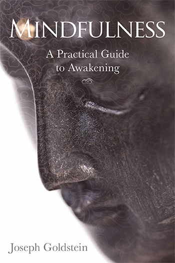 Joseph Goldstein | Mindfulness: A Practical Guide to Awakening