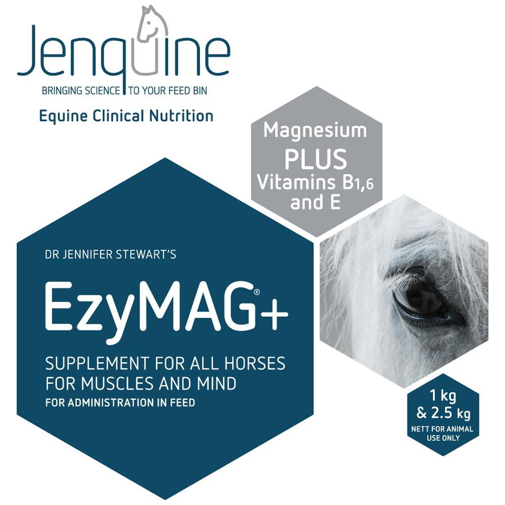 Ezymag+ brochure 020218.jpg
