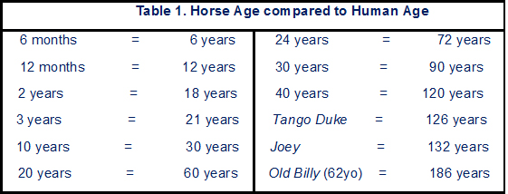 Table1 horse ages.jpg