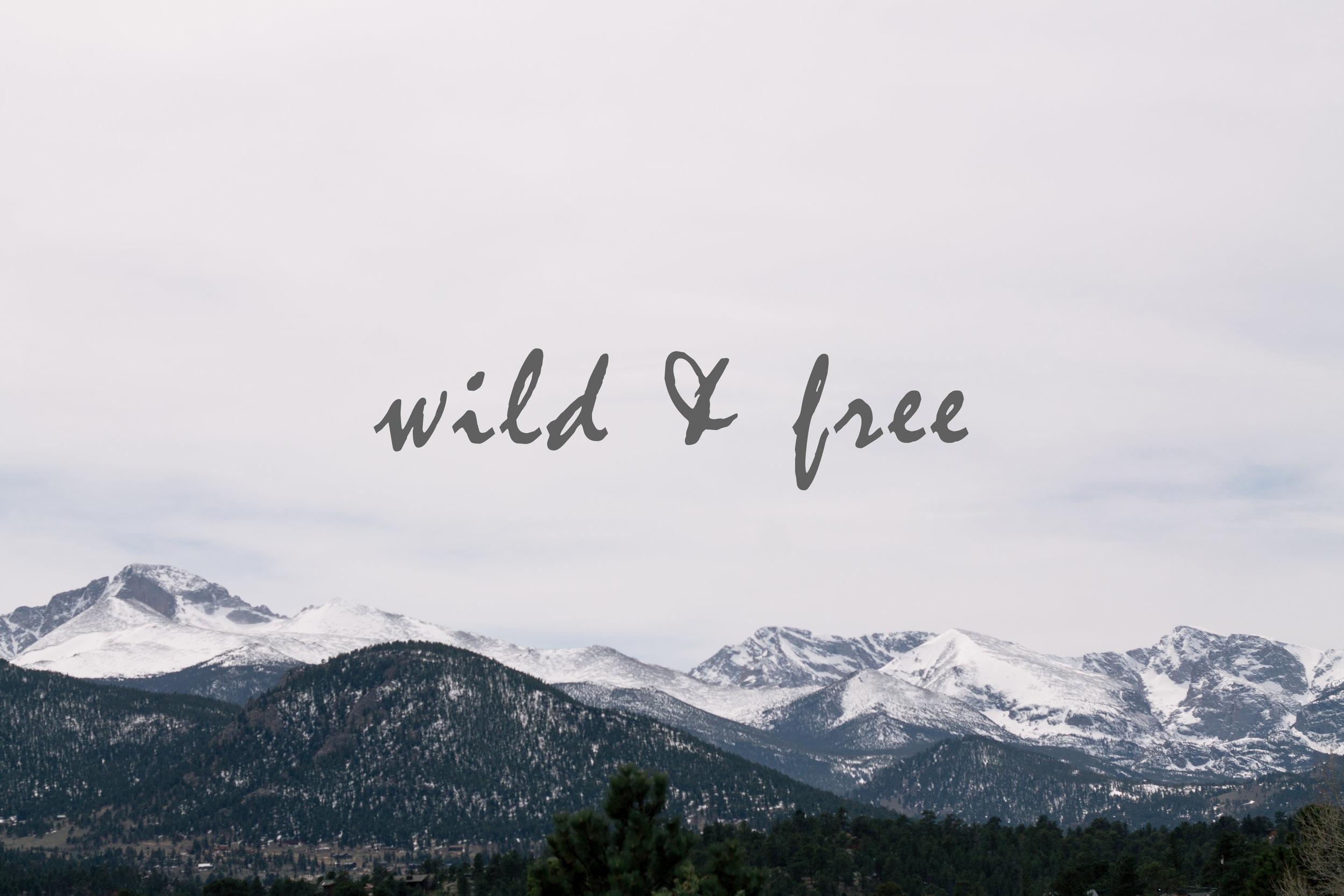 wildandfreefront.jpg