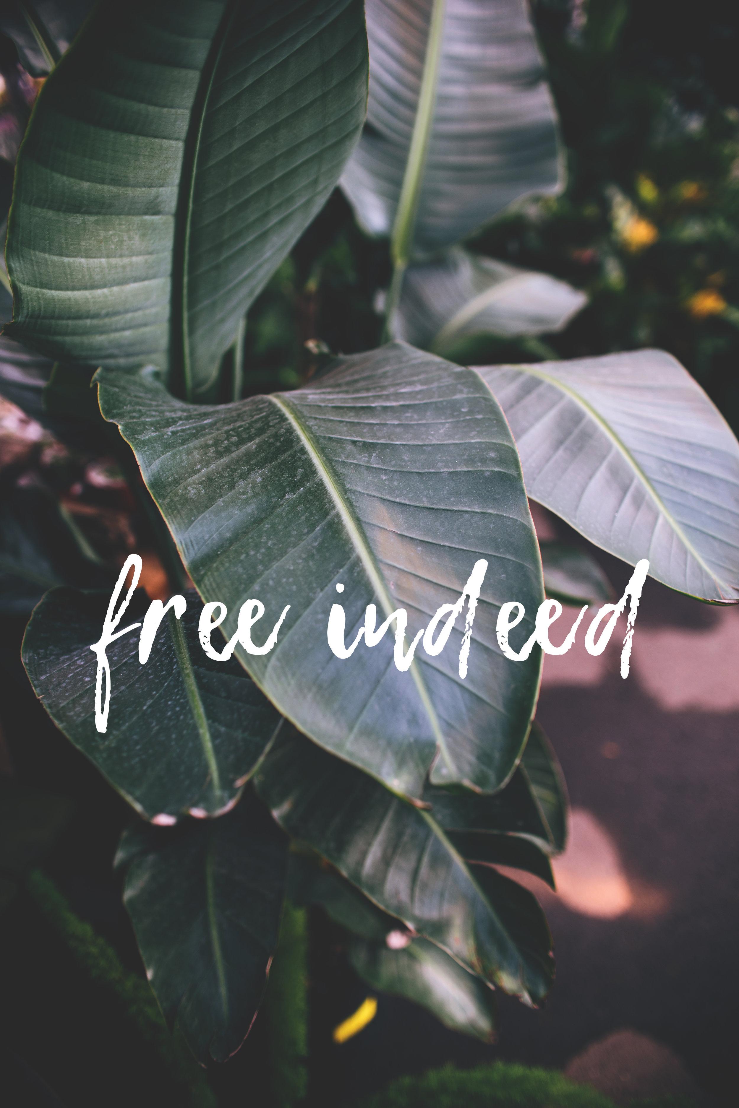 freeindeedpostcard.jpg