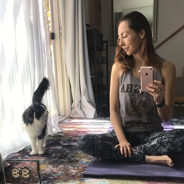 Taurus likes to talk to me when I'm sitting quietly & trying to meditate. 😸 Yogi kitty kat Sundaze. #allthefeels . Remember to play! Dance, jump, laugh, each day we get to start over. Meditation is challenging, whether 5min a day on your mat, in your car, laying in your bed, even in shower, why not? 🤷🏻‍♀️ . Be here, in this moment right Meow! My heart is turning 17 going on 84! #catmom ✨ . #cats #yoga #catsandyoga #yogi #yogini #stretch #chill #breathe #meditate #yogaeverydamnday #homepractice #sunday #sundayfunday #sundayvibes #goodvibes #myheart #kittykat #taurus #fav #enjoy #grateful #lifelessons