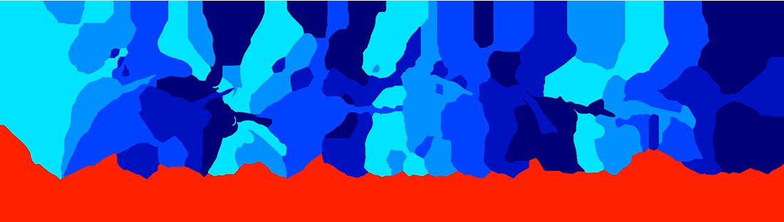 carolina gymnastics.png