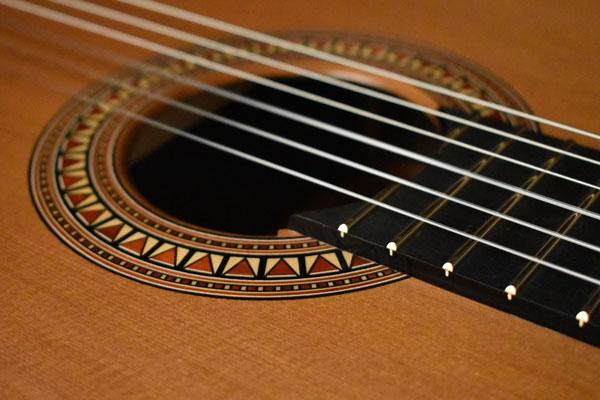 Rosette-Oblique_Nikon.jpg