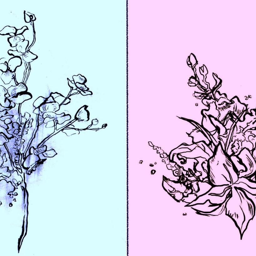 High Bloom : Haloed