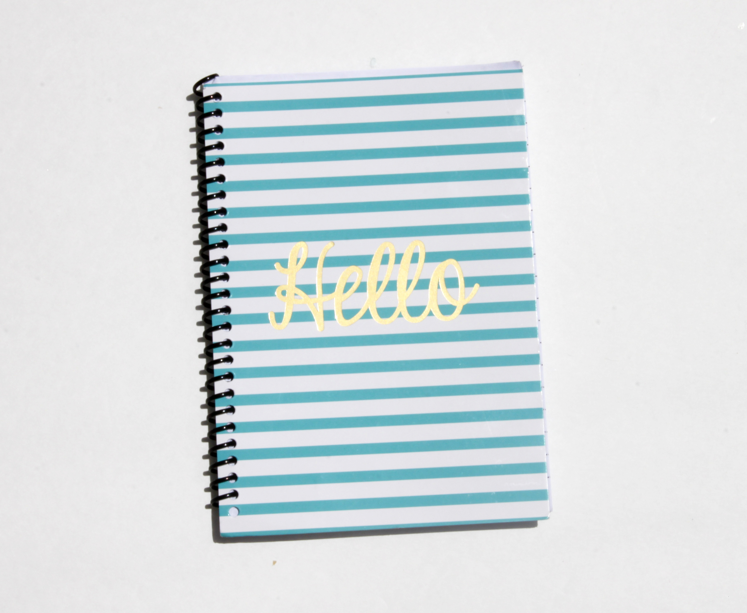MY DAILY NOTEBOOK