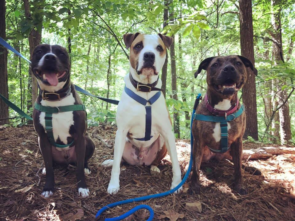 Javi, Oscar, and Sula