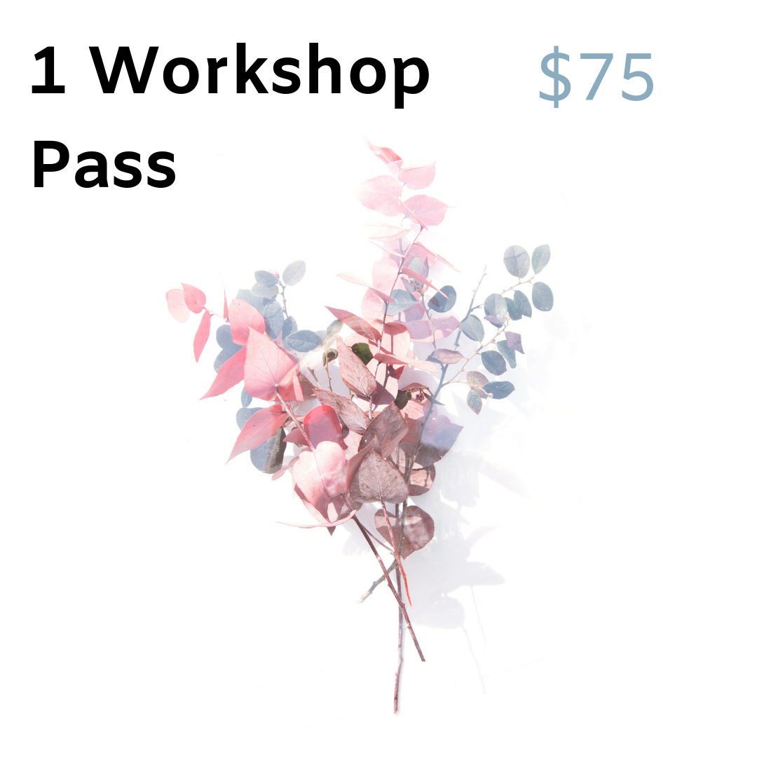 Does a particular workshop sound interesting? Come for just the workshop. No meals, no lodging.
