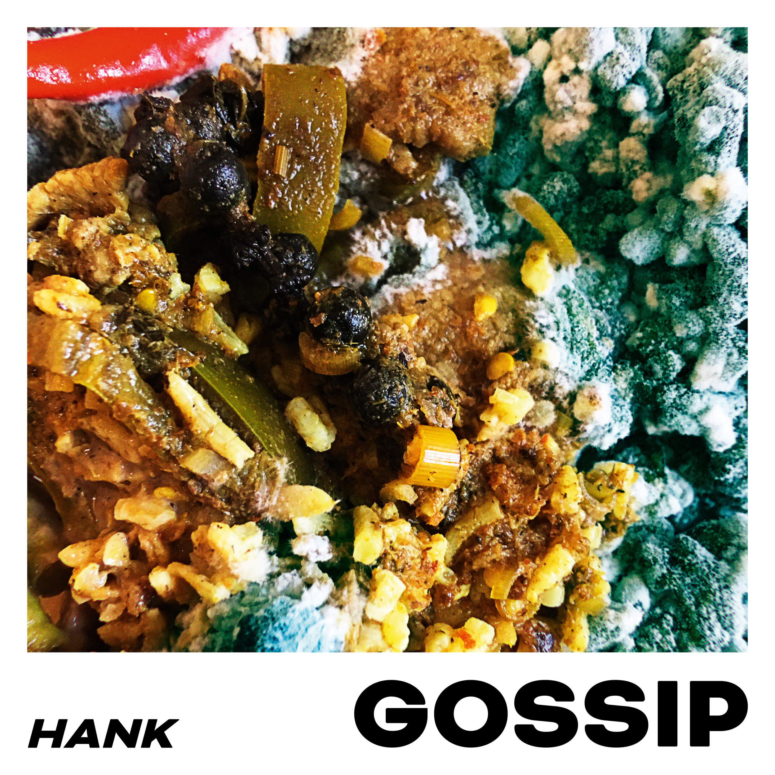 HANK - DRIVING LESSONS (CH)