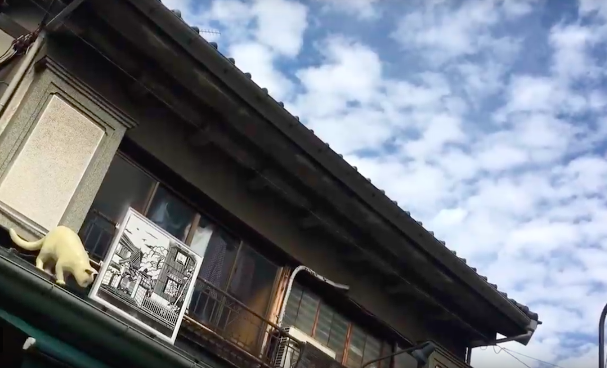 Daytime Yanaka Old Town - ●Time: 10:30am-02:00pmPlease contact us if the tour isn't available on your preferred date)Private tour starts from 11am●Walking Distance: About 1.5 miles (2.5km) totalPlease wear comfortable walking shoes●Meeting Place:JR Nippori Station, North gate●Price: 12,000 yen/per adultChild (7to 12): 8,000 yen/childChild (3 to 6): 5,000yen/childChild (0 to 2): Free*From Aug 1st to Sep 30th +8% TAXFrom Oct 1st +10% TAX●Minumim: 2 people●What's included:Various kind of food and drinks, please find as below!