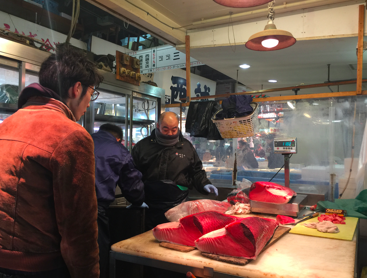 Tuna Wholesaler - You can watch sushi chefs, restaurants buy fish for the day.