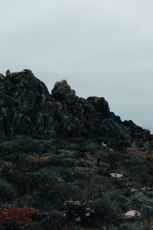 Stay_Driven_Monterey_Car_Week_Whitesse_Koenigsegg-45.jpg