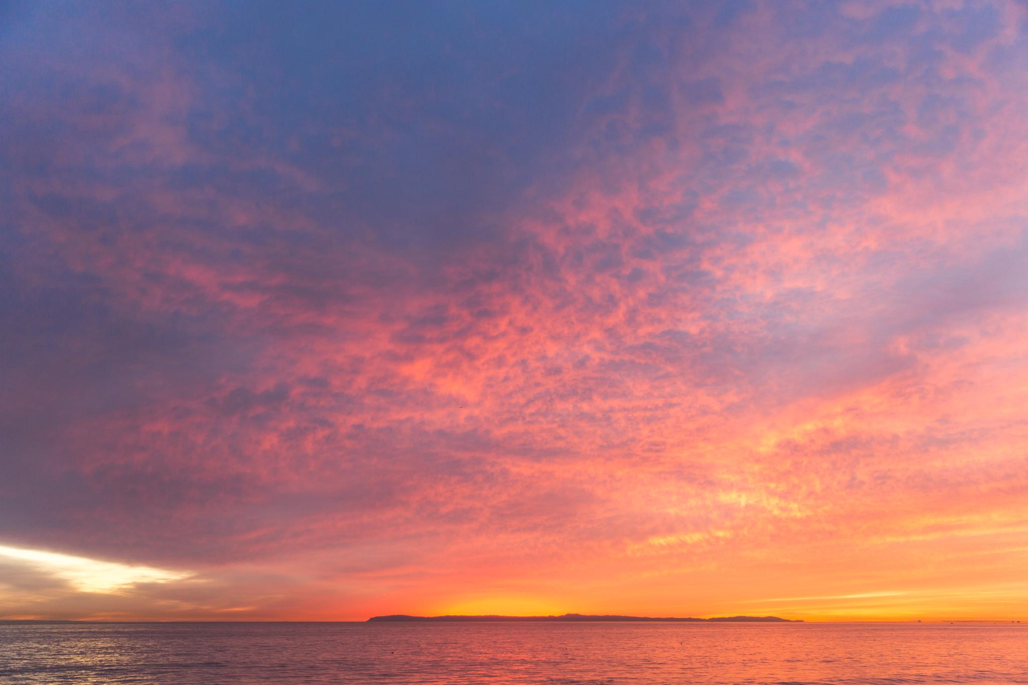 Babettes_Takeaway_Sunset_Jasmine-6.jpg
