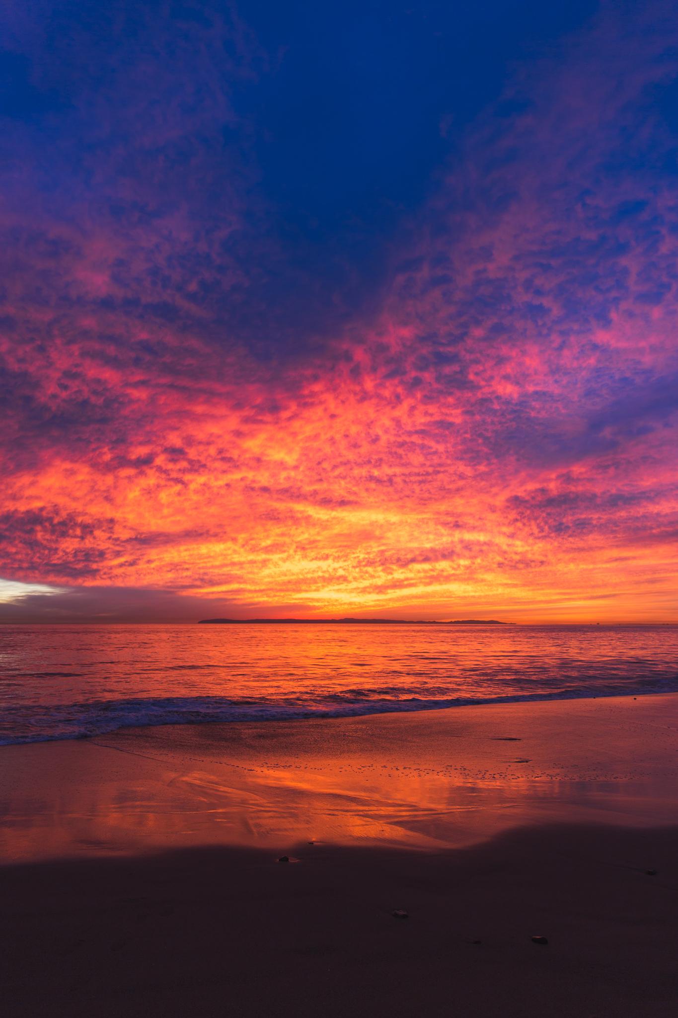 Babettes_Takeaway_Sunset_Jasmine-9.jpg