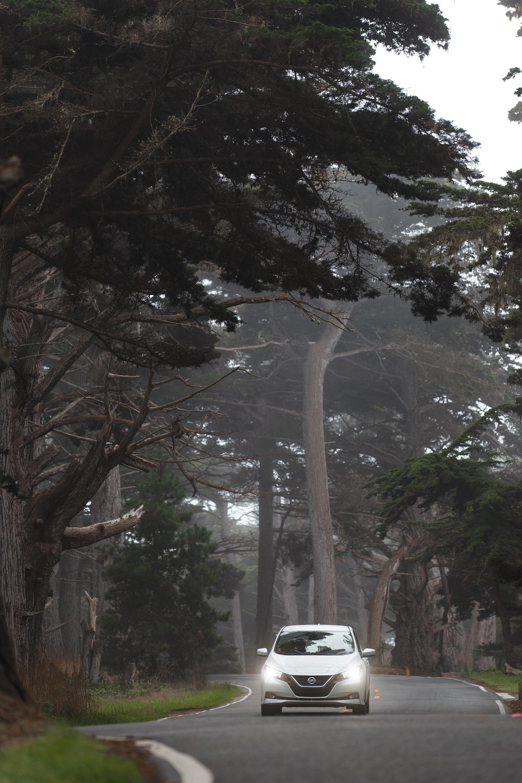 ABE1_LEAF_Monterey-5.jpg