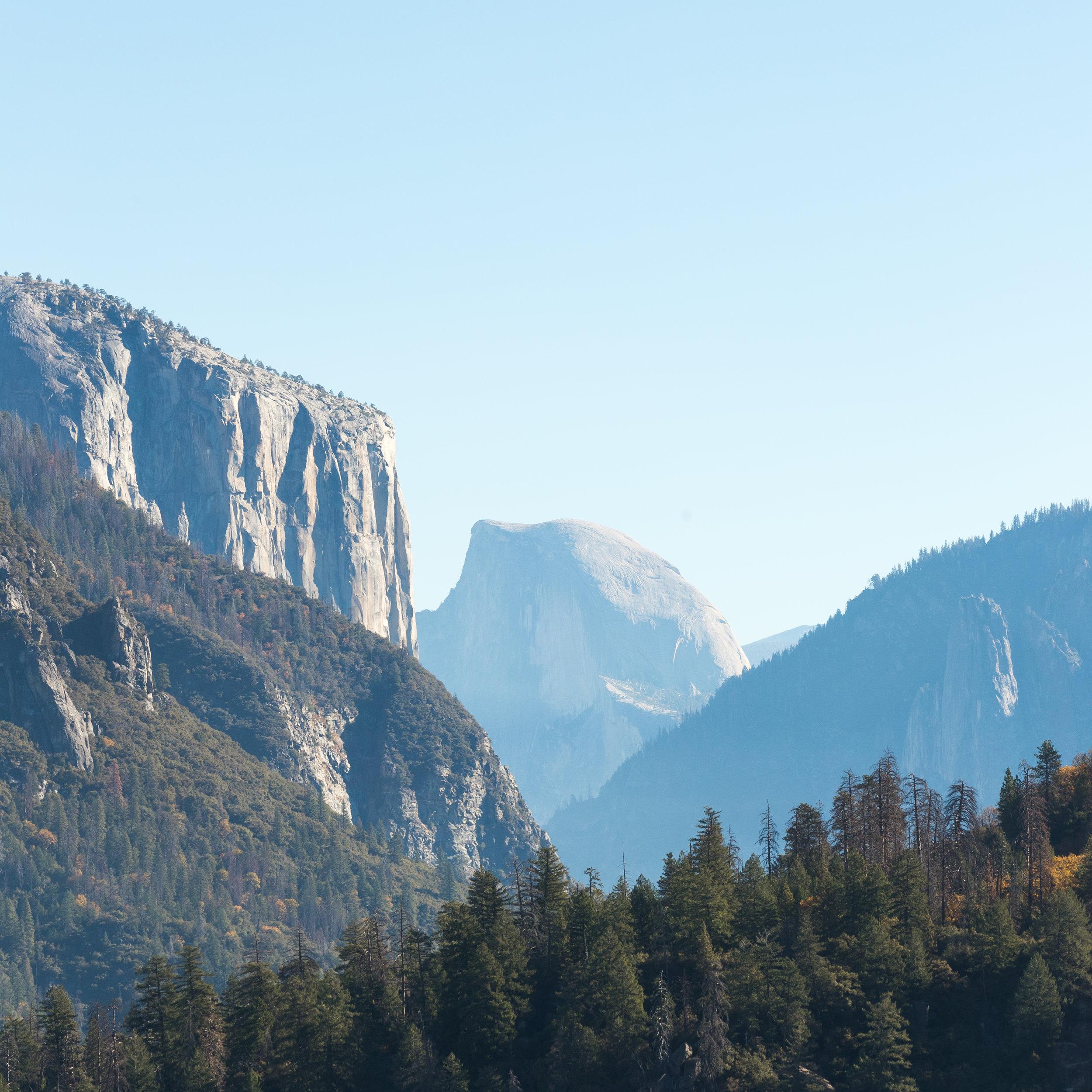 ABE1_VW_Tiguan_Yosemite_Square-5.jpg