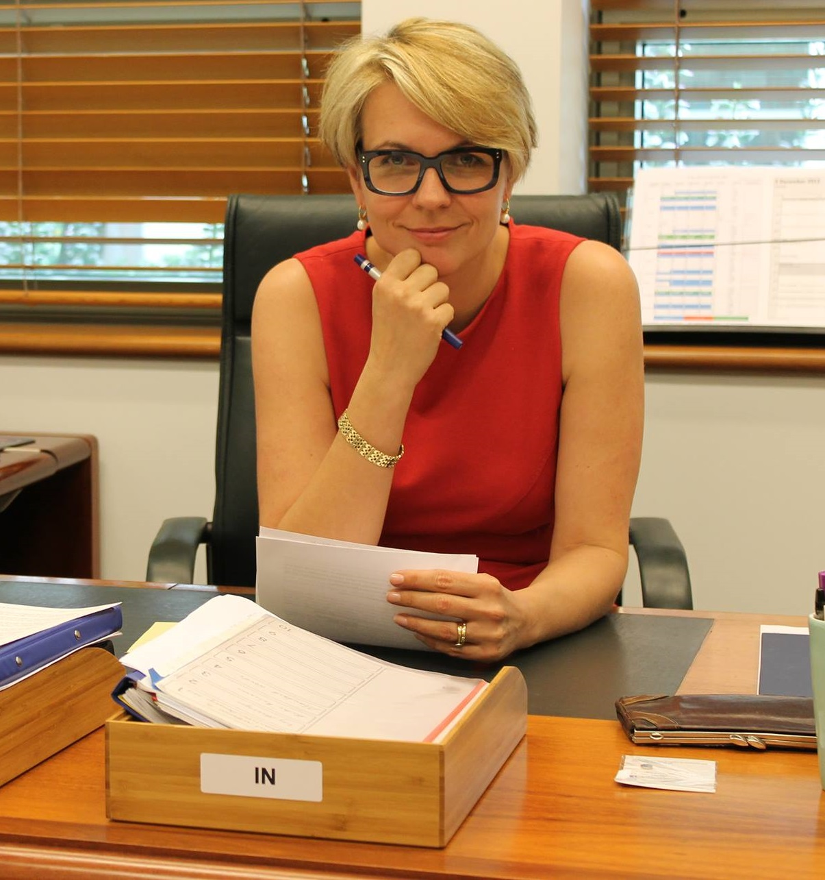 "Tanya Plibersek on Labor's gender equality strategy: ""A Labor Government will deliver a National Gender Equality Strategy that will set targets for change, drive measurable action to tackle inequality, and we'll report on Australia's progress through an annual update to the Parliament."" Photo supplied."