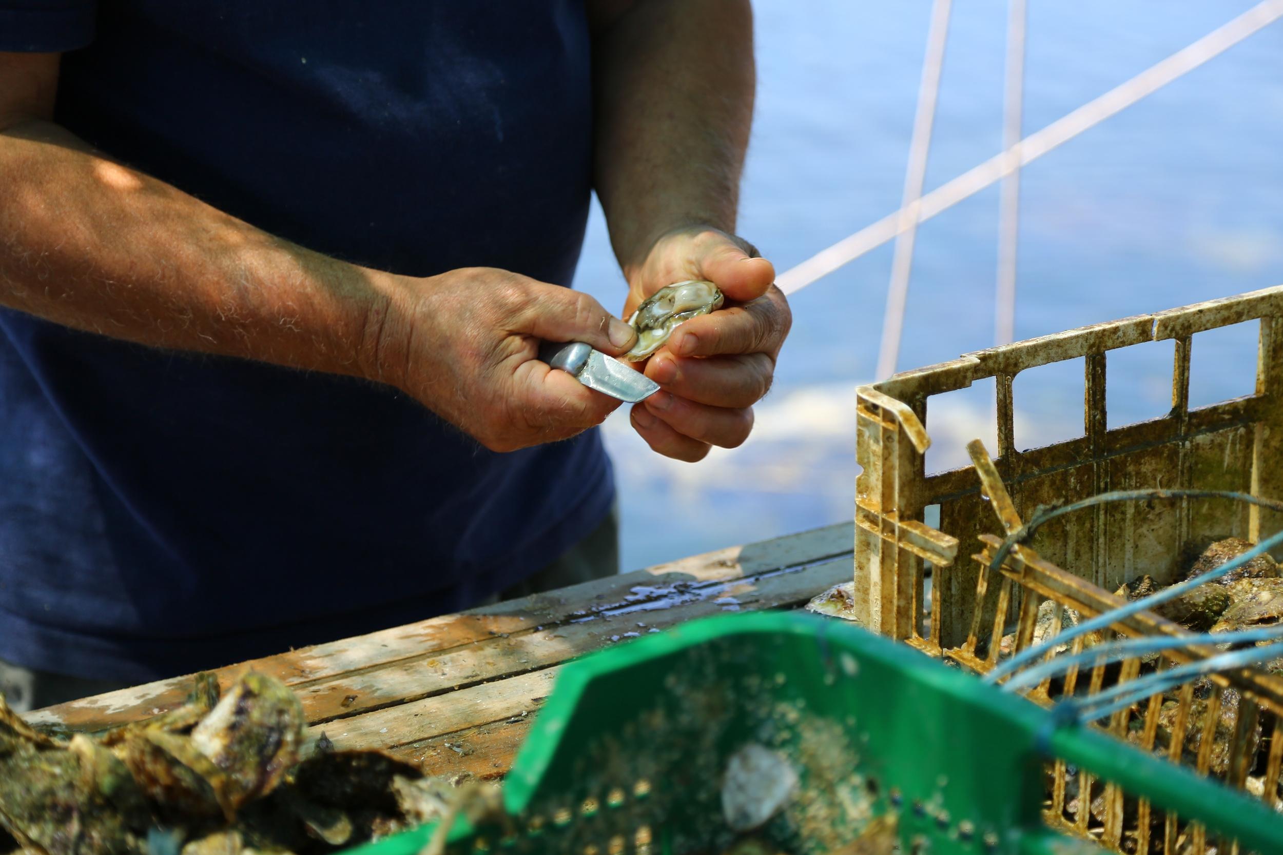 Métiers de la mer