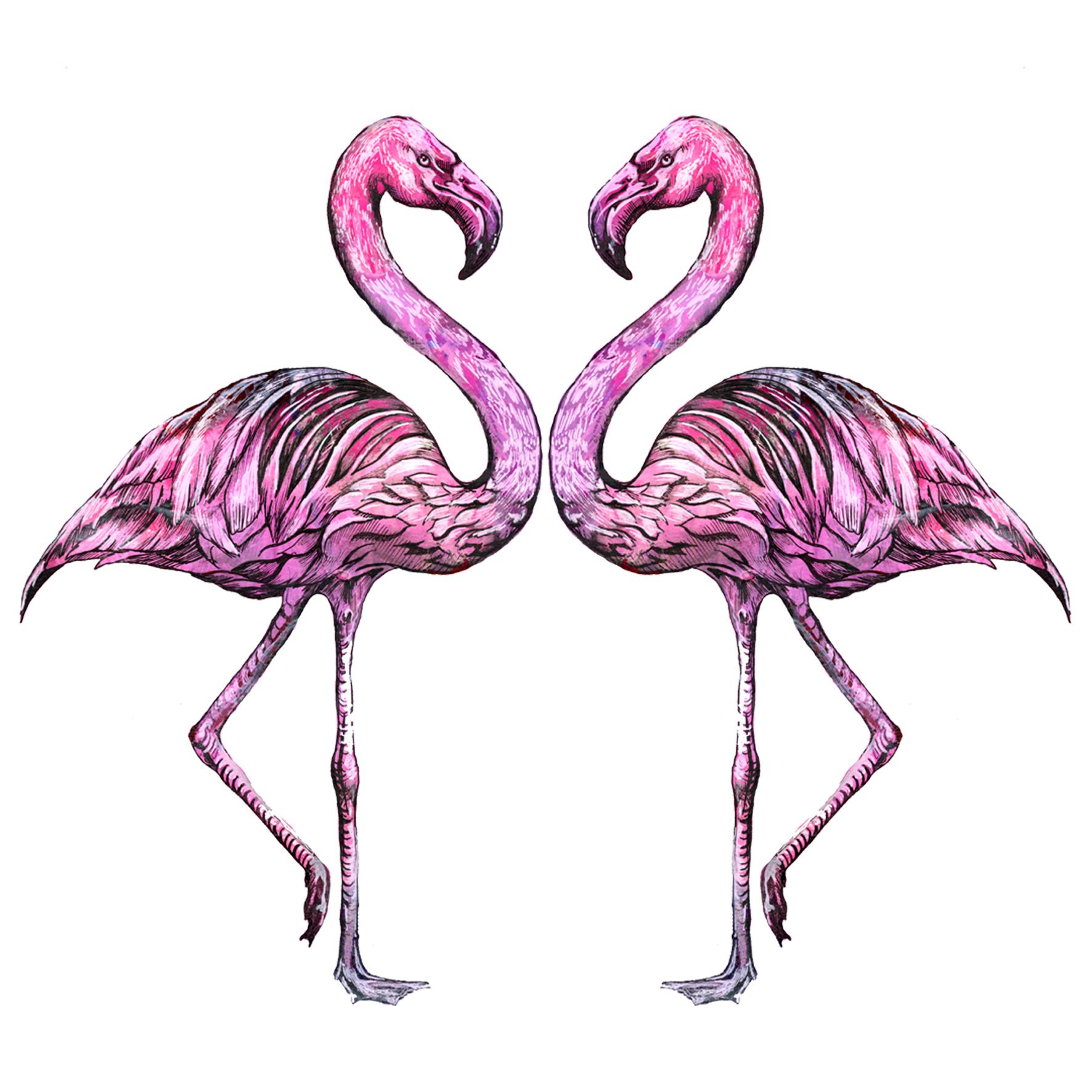 flamingos insta.jpg