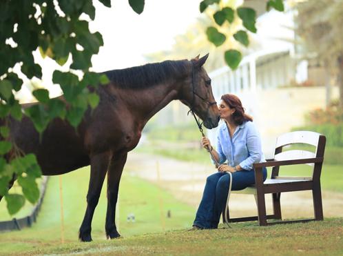 Tales horse 1.jpg