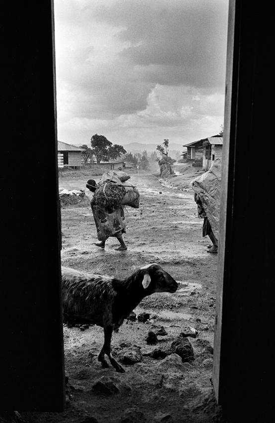 Congo DRC09.jpg