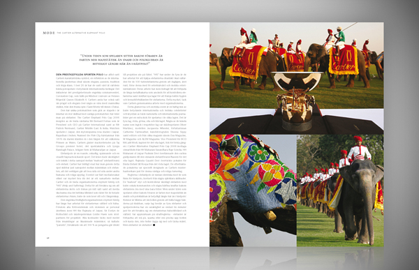 AE_examples_of_pages_gallery_copyright_ChrizPhotography.se_J&W_6.jpg