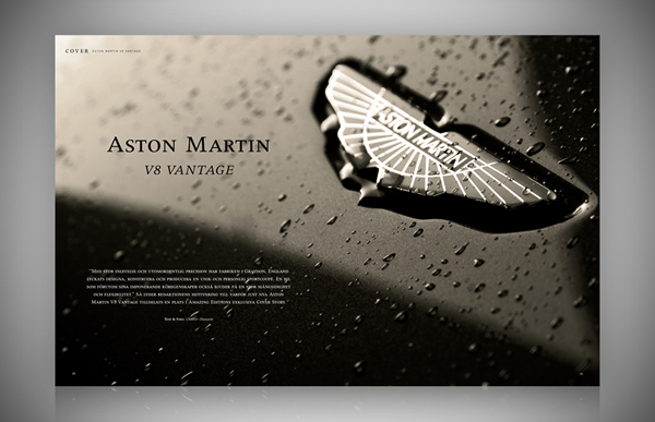 AE_examples_of_pages_gallery_copyright_ChrizPhotography.se_motor_8.jpg