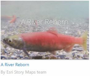 Example_RiverBorn.jpg