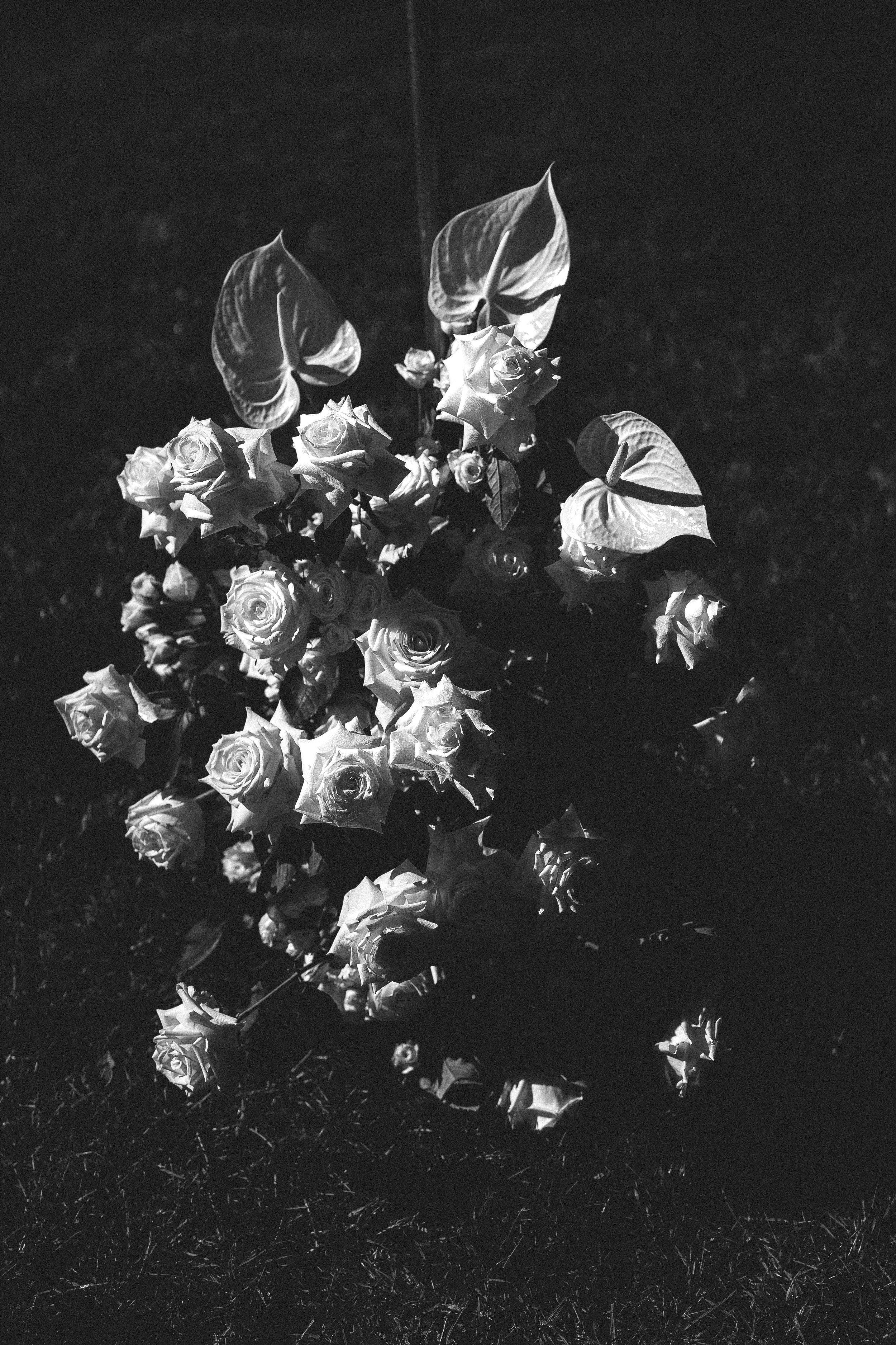 linda-rudi-fenton-wedding-73.jpg