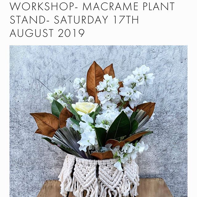 WORKSHOPS ✂️ this one is going to be AMAZING! Our friend @cove_collective_ is coming in to teach us all how to make a super cool macrame plantstand, plus there's the option to stick around and flower up a storm with the Clementine crew! Double the fun flower lovers! Head to our website to grab yourself a spot.. this workshop has limited numbers left so #rundontwalk