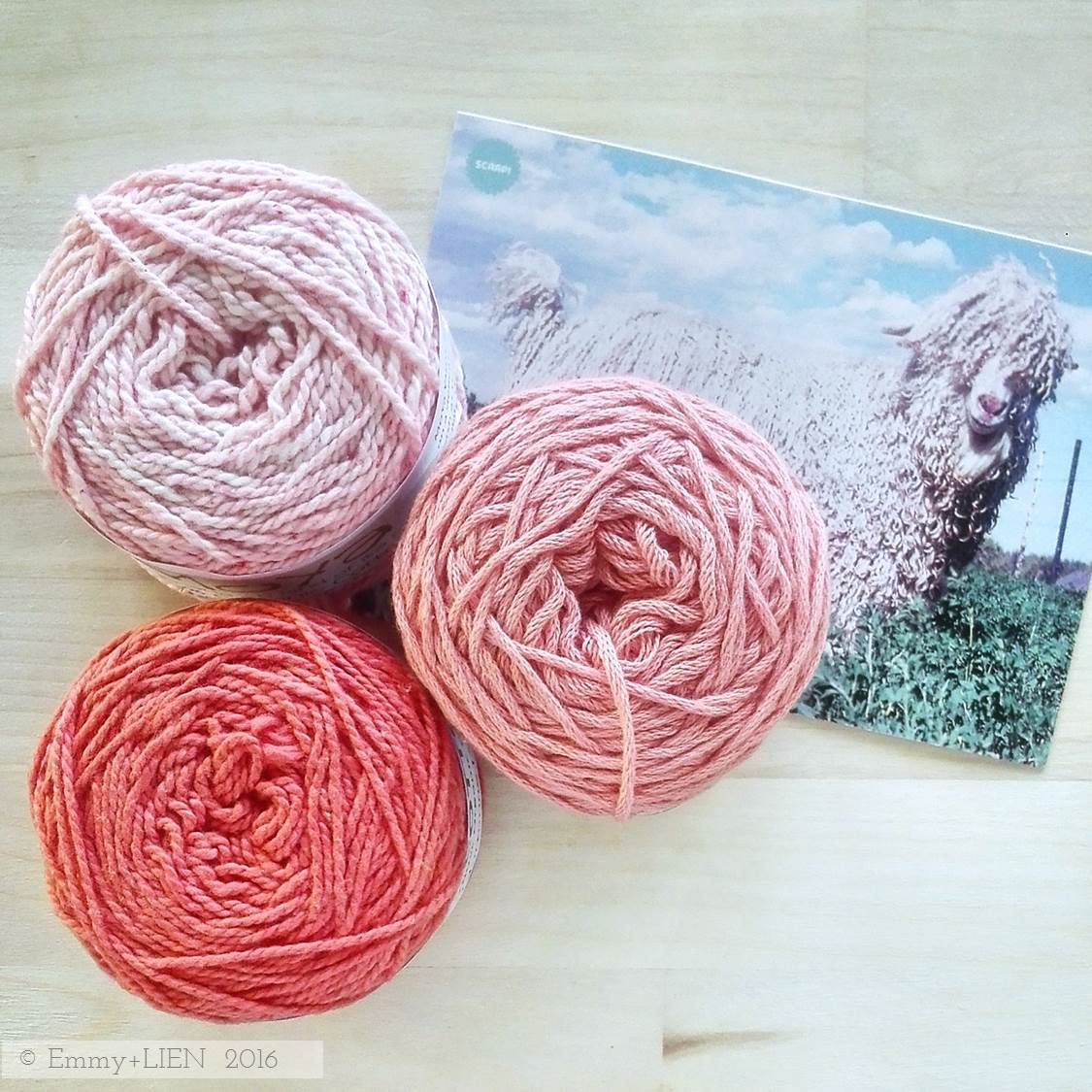 Hand-dyed African yarns supplied by Scaapi.nl - MoYa, Vinnis Colours, Nurturing Fibres