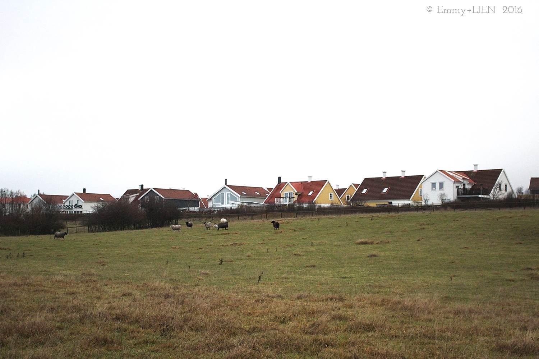 winter landscape, Skåne, southern Sweden