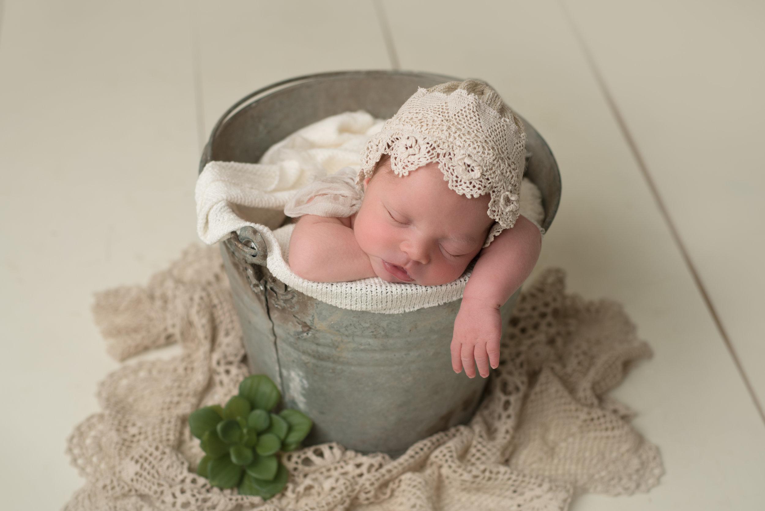 NH newborn photography