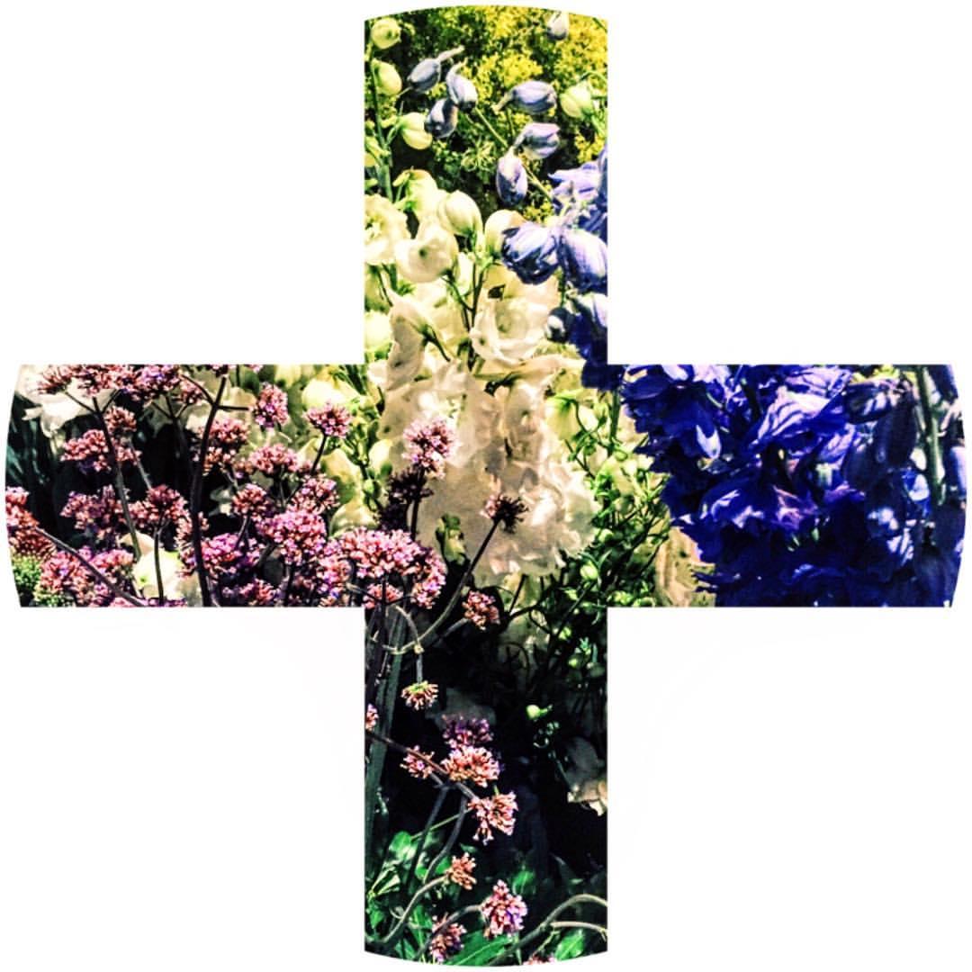 Flowers for France 2/2 #PrayforNice  (at London, United Kingdom)