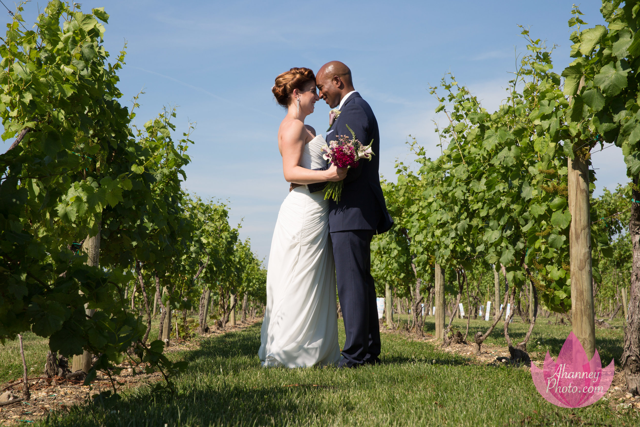AHanneyPhoto at Tomasello Winery