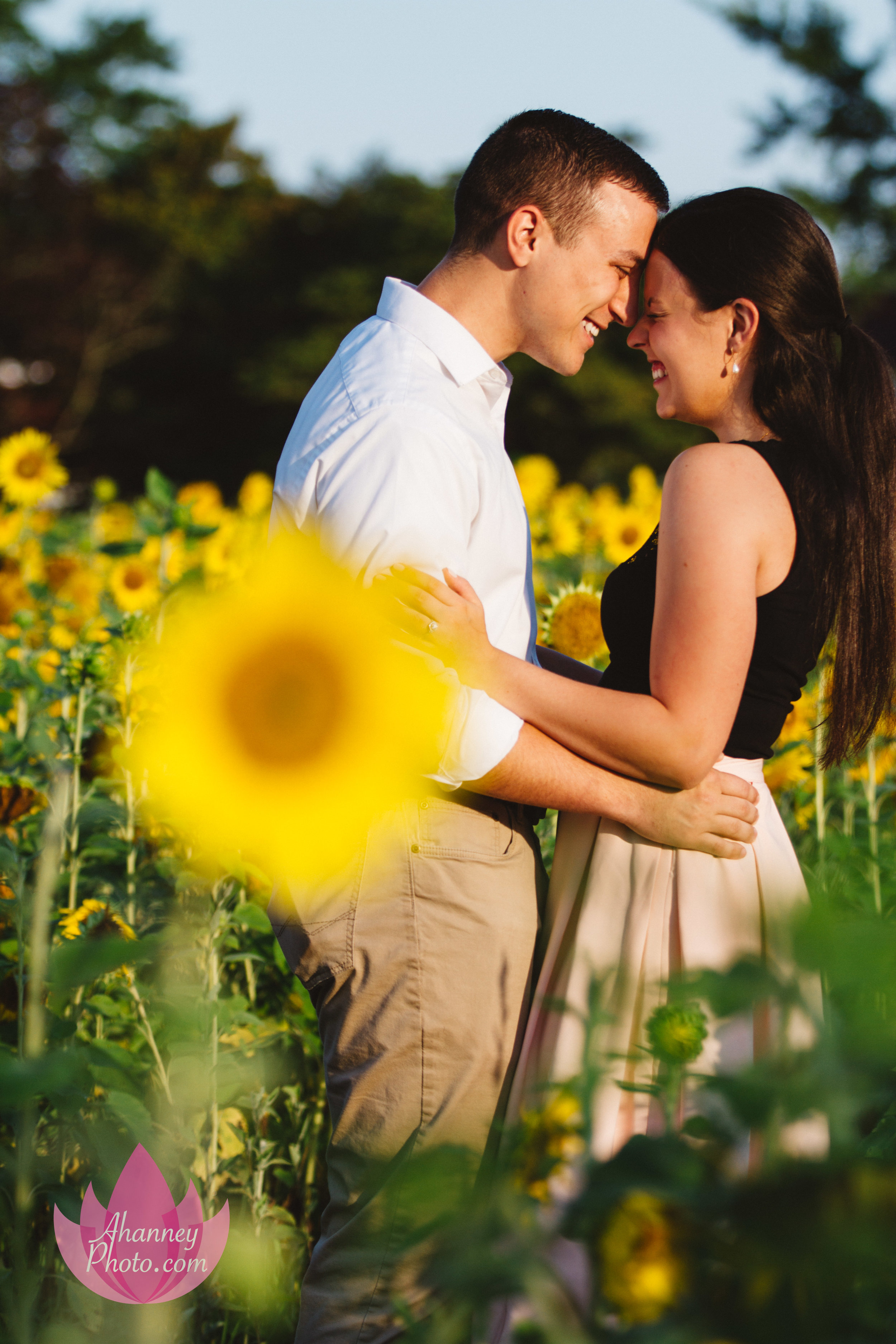 Engagement Photographer in Cape May in Sunflower Field Kissing She Said Yes