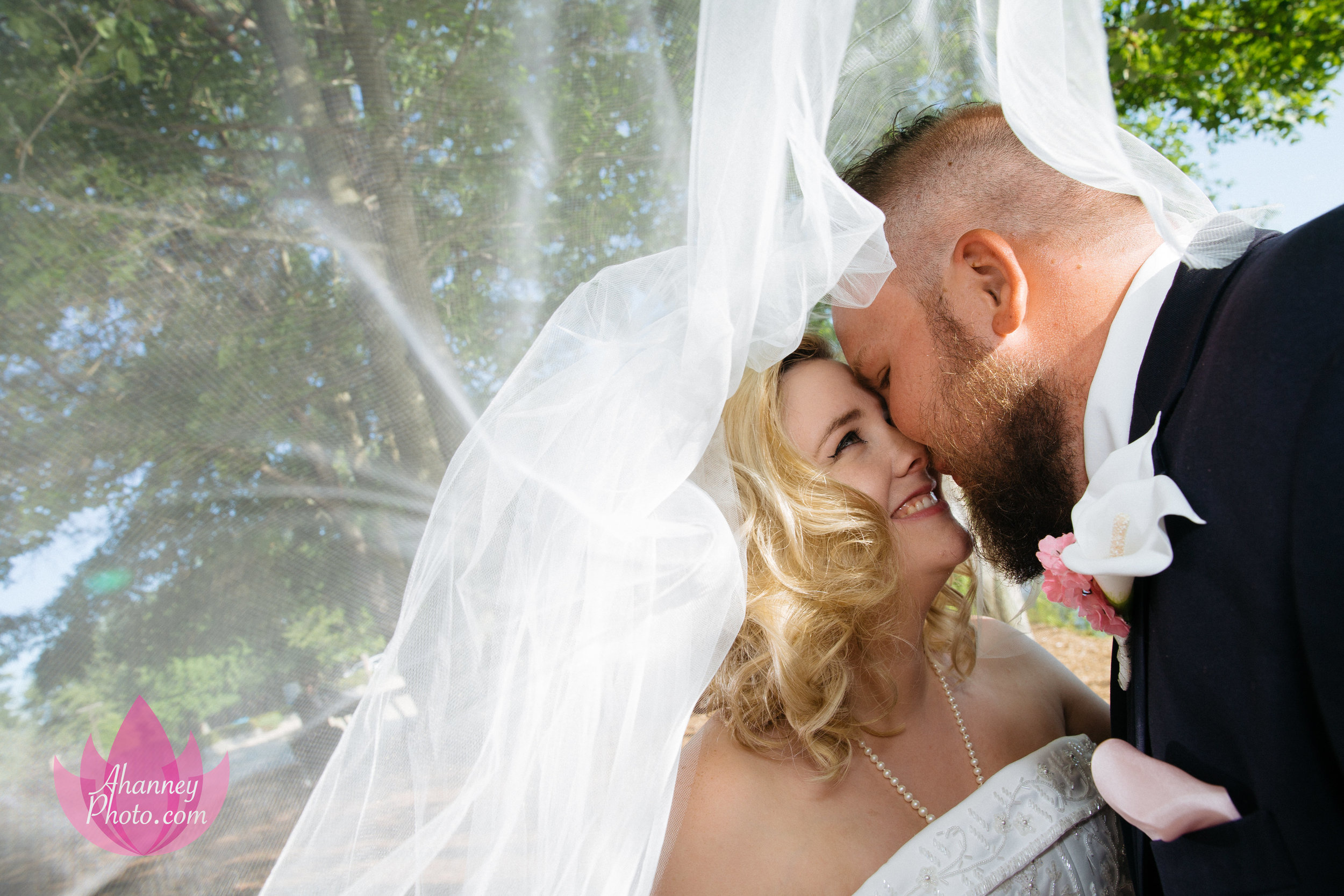 Wedding Photography of Bride and Groom in Love under Vail in Medford New Jersey by Anastasia Hanney Photography AHanneyPhoto