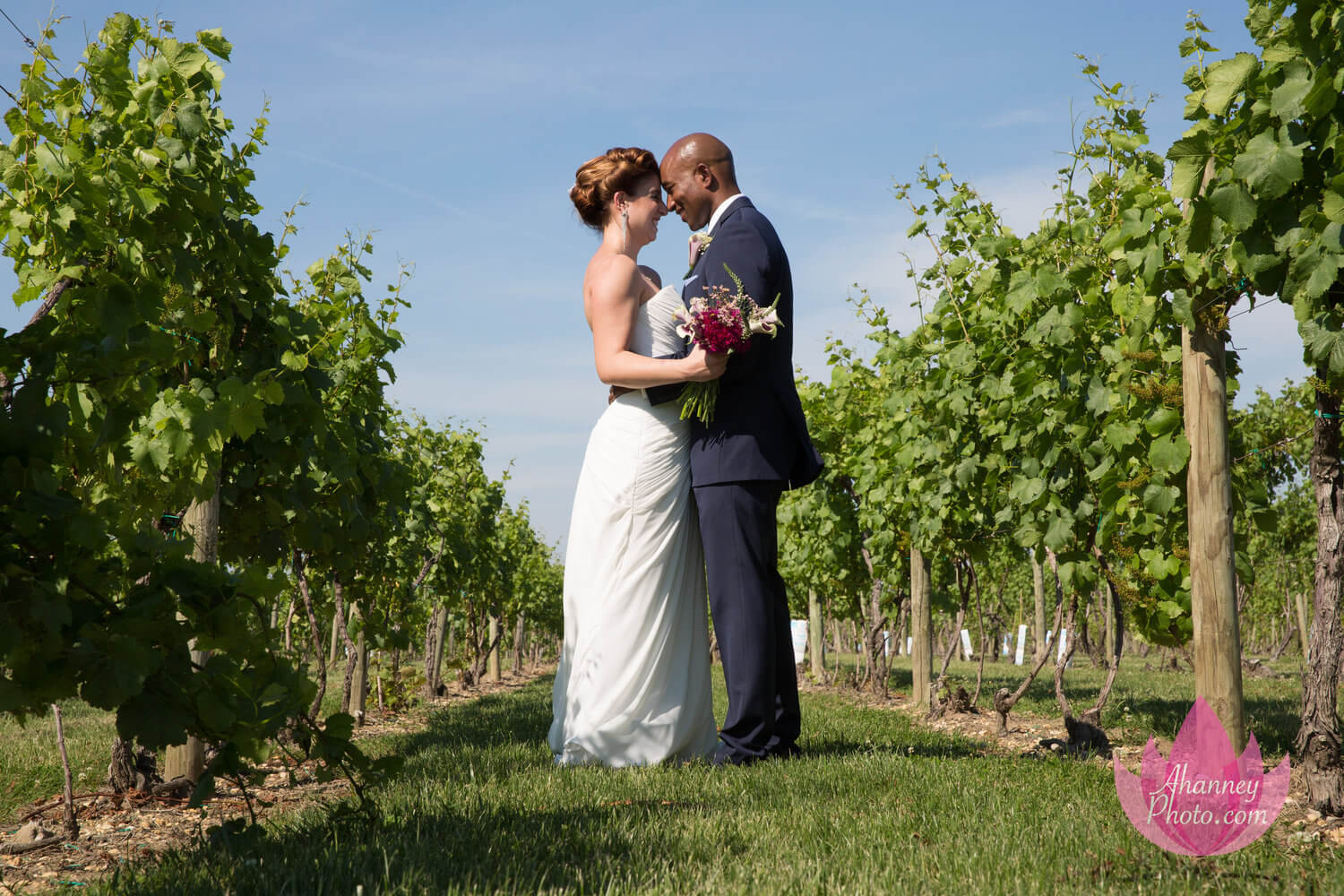 Wedding Photography of Bride and Groom in Vineyard at Tomasello Winery in Hammonton New Jersey by Anastasia Hanney Photography AHanneyPhoto