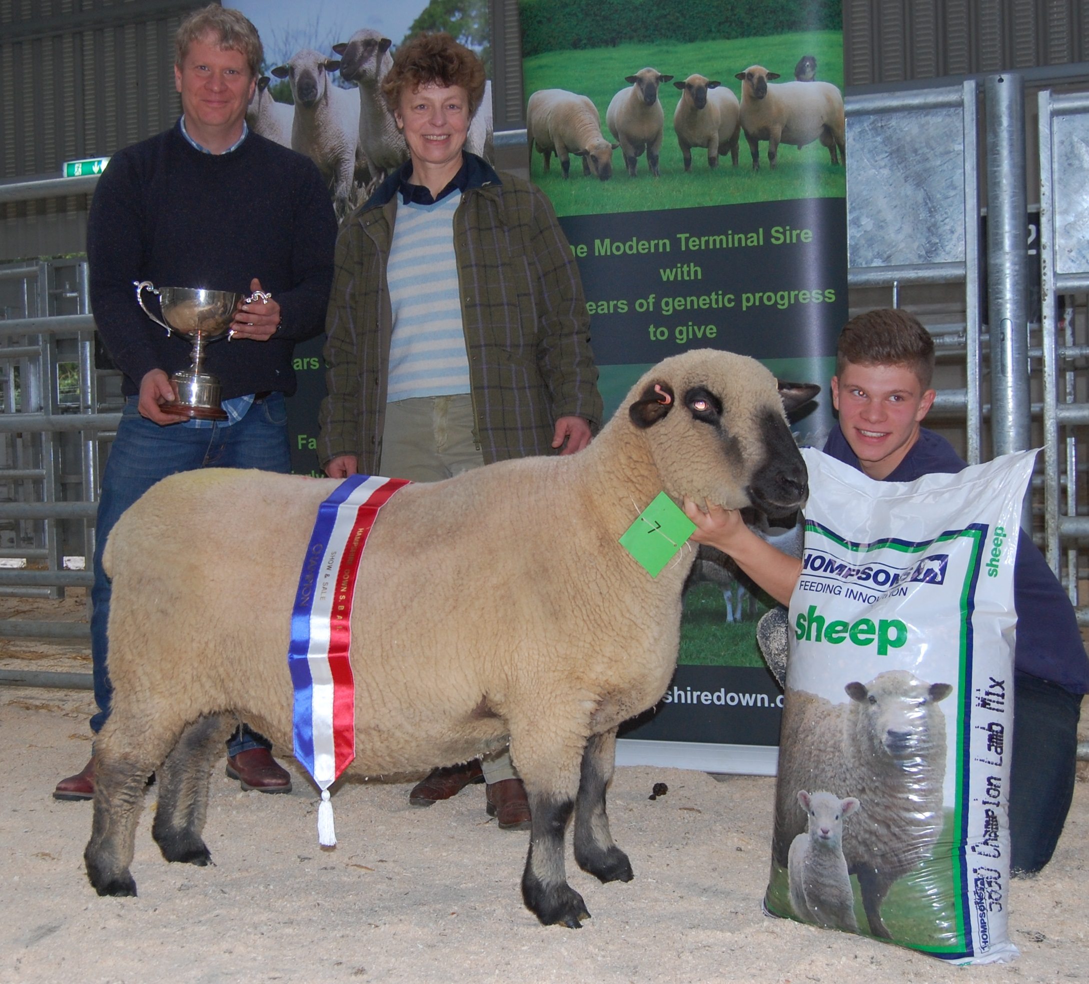 Judge Janet Hill with her choice for Champion, an older ewe from Peter & Heather Stevenson's Lenaderg Flock